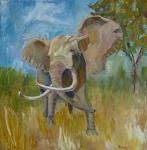 Cabela the Elephant, oil, 20 x20