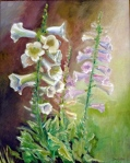 Summer Foxgloves,16x20,o/hb