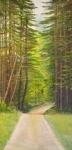 Summer Road,24x48,a/c